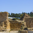 Old Carthage ruins — 图库照片