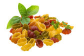 Raw macaroni variet color — Stock Photo