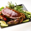 Big boiled crab — Stock Photo