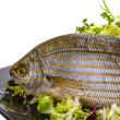 Stock Photo: Salemporgy - sarpfish
