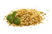 Sezamová semena — Stock fotografie