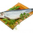 Marinated herring with herbs — Stock Photo