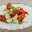 Italosalad Caprese — Stock Photo #29923447