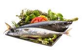 Atlantic raw sardine — Stock Photo