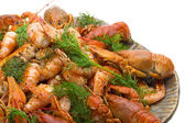 Fluvial crawfishes — Stock Photo