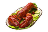 大龙虾 — 图库照片