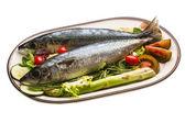 Atlantische rohe sardine — Stockfoto