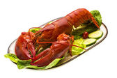Large Lobster — Stockfoto