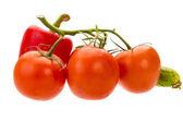 Paprika, rajče větev a okurka — Stock fotografie
