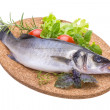 Raw seabass with rosemary and herbs — Stock Photo