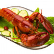 Large Lobster — Stockfoto