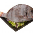 Raw porgy — Stock Photo #33904237
