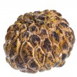 Stock Photo: Custard-apple
