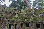Angkor Wat complex — Stock Photo