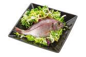 Raw Sea Perch — Stock Photo