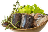 Tinned Pacific saury — Stock Photo
