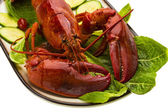 Gros homard — Photo
