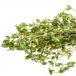 Stock Photo: Thyme