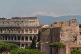 意大利罗马的斗兽场 — 图库照片