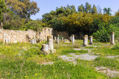 Old Carthage ruins — Stock Photo