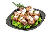 Escargot — Foto Stock