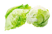 Iceberg salad — Stock Photo