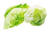 Iceberg salad — Stock Photo