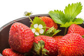 Ripe strawberry — Stockfoto