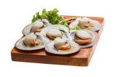 Raw fresh scallops — Stock Photo