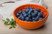 Blueberry with leaves — Stok fotoğraf