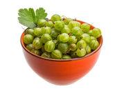 绿鹅莓 — 图库照片