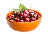 Sweet ripe cherry — Stock Photo