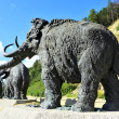 Leaving mammoths — Stock Photo