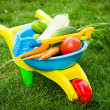 Toy barrow with vegetables — Stock Photo