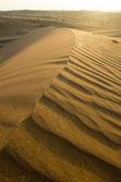 Arabian desert — Stock Photo