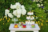 Dessert table in a garden — Stock Photo