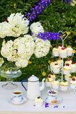 Dessert and tea table in a garden — Stock Photo