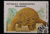 Triceratops — Stockfoto