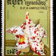 Kampuchea shows odontoglossum Royal Sovereign - Zdjcie stockowe