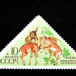 USSR shows depiction of deer family — Stock Photo #15612195