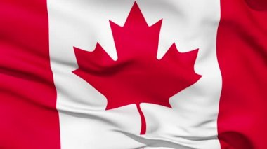 Realistic 3d seamless looping Canada flag waving in the wind. — Stock Video