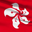 Realistic 3d seamless looping Hong Kong flag waving in the wind. — Stock Video