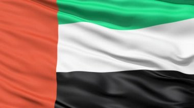 Realistic 3D detailed slow motion United Arab Emirates flag in the wind — Stock Video