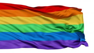 Realistic 3D detailed slow motion gay flag in the wind — Stock Video