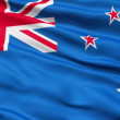 The New Zealand Flag — Stock Video