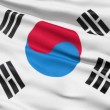 The South Korea Flag — Stock Video #12539342