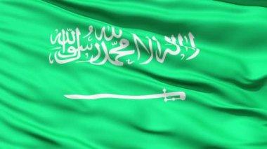 Waving Flag of Saudi Arabia with the Arabic writing and a sword,seamless looping — Stock Video