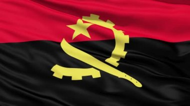 Waving Falg Of Angola — Stock Video