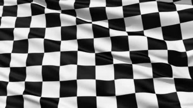 Fluttering Black And White Chequered Flag — Stock Video