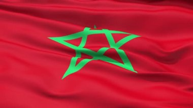 Waving Flag Of Morocco — Stock Video